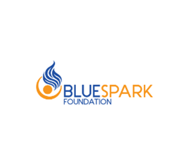 Image result for blue spark foundation
